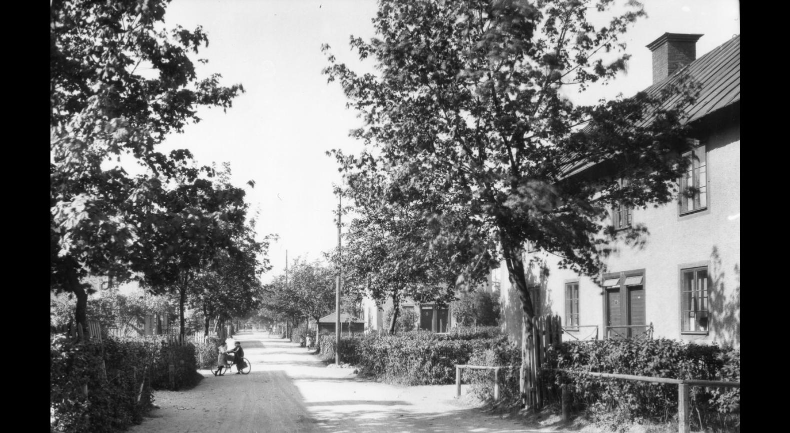 Brukslängor i Sandviken 1926 (foto Hartman)