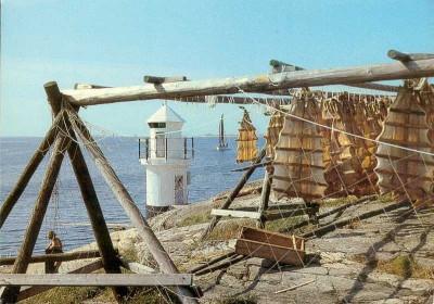 Lutfisk på tork i Mollösund. Bild lysekil-mobel.bloggspot.com