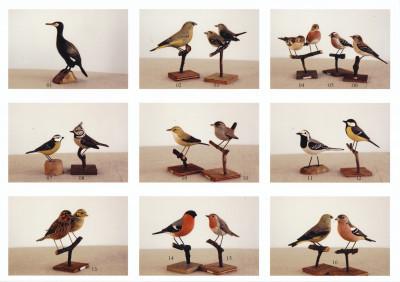 Han tjälje och målade alla fåglarna själv
