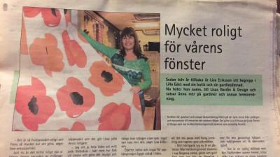 Liisa tidningsartikel