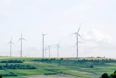 421 klimatkompenserar över 500 ton koldioxid tillsammans med GoClimate.